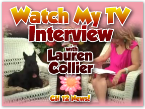lauren interview